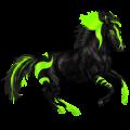 Horse KWPN Black