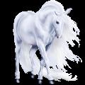 Pegasus Lusitano Dark Bay