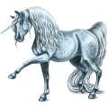 Unicorn Arabian Horse Dapple Gray