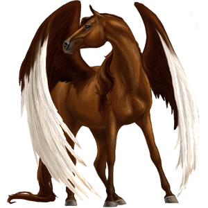 Pegasus Arabian Horse Dark Bay