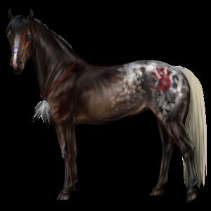 Pegasus Arabian Horse Liver chestnut
