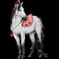 Riding Horse Arabian Horse Flaxen Chestnut