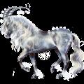 Unicorn Appaloosa Chestnut Spotted Blanket