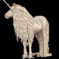 Unicorn Australian Pony Cremello