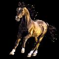 Pegasus Thoroughbred Flaxen Chestnut
