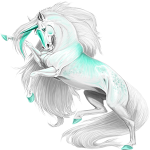 Unicorn Gypsy Vanner Bay Tobiano