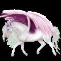 Winged unicorn Mustang Dark Bay