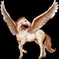 Pegasus Selle Français Cherry bay