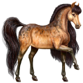 Pegasus KWPN Flaxen Chestnut