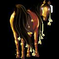 Horse Arabian Horse Liver chestnut