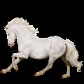 Pegasus Thoroughbred Black