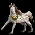 Unicorn Arabian Horse Liver chestnut