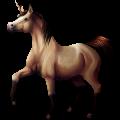 Unicorn Hanoverian Liver chestnut