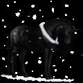 Unicorn Arabian Horse Fleabitten Gray