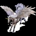 Winged unicorn Australian Pony Cremello