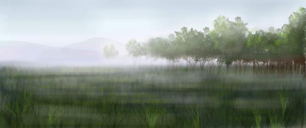 Brume et Brouillard 100147720-presentation