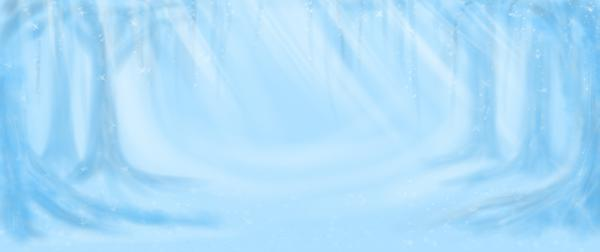 L'Hiver - Paysages Enneigés 100168703-presentation