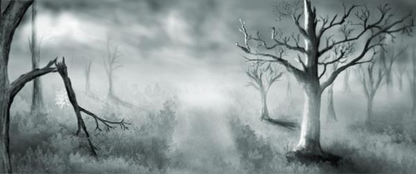 Brume et Brouillard 100239213-presentation